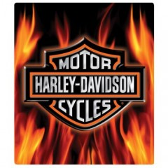 H-D® Flame Logo Sign